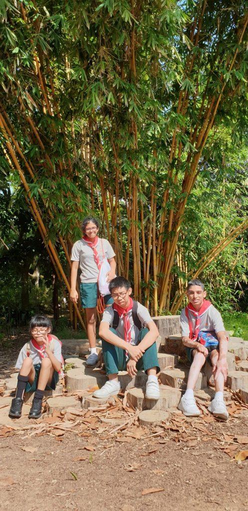 Scouts photo2